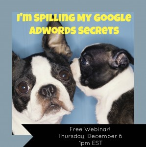Free Webinar - Spilling My Google Adwords Secrets