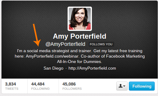 Twitter Bio Screenshot - Amy Portferfield