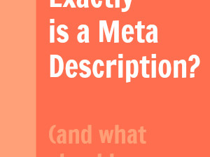 What Exactly Is a Meta Description? And what should I do with it?