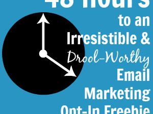 email marketing opt-in freebie in 48 hours 300x300